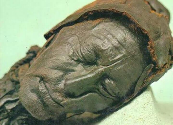 swamp mummies
