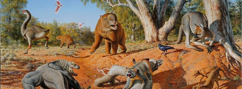 This is a menagerie of megafauna that inhabited Australia some 45,000 years ago.