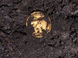 End of March 2017, one of the Roman coins exhumed in the forest of Teutoburg. © Varusschlacht gGmbh Museum and Park Kalkriese