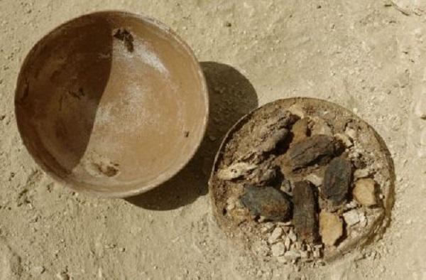 w453-81768-vestiges-d-offrandes-de-dattes-et-de-graines