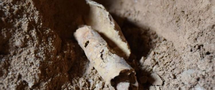 cover-r4x3w1000-589c82ce50bd5-Fragment de rouleau sans écriture, retrouvée dans la grotte Q12, à QUmran Crédits Casey L. Olson et Oren Gutfeld, Université Hébraïque