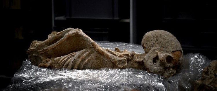 The human skeletons were transferred to a laboratory of the American School of Archeology in Athens, July 7, 2017