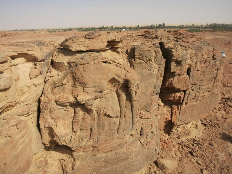 A standing dromedary, carved in high relief, on the facade of a rocky outcrop in the Jawf province (Saudi Arabia). Credits: CNRS / MADAJ, R. Schwerdtner
